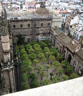 Patio de los Naranjos in Cordoba – Spain