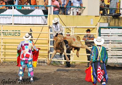 Guayaquil Rodeo Montubio
